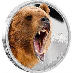 2$ Niedźwiedź Grizli - Królowie Kontynentów