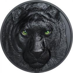 10$ Black Panther - Hunters...