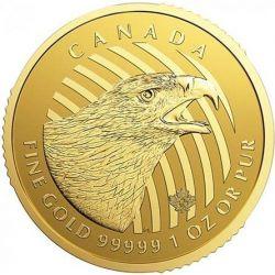 200$ Złoty Orzeł - Zew Natury