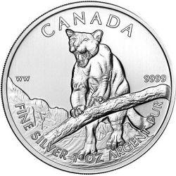 5$ Puma - Dzika Przyroda, tuba