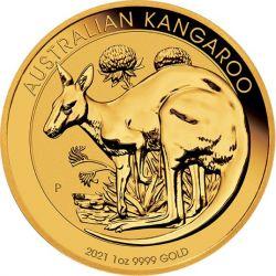 100$ Kangaroo 2021