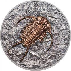 500 Togrog Trylobity - Ewolucja Życia