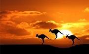 Symbole Australii