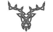 Zwierzęta Celtyckie