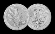 LIŚĆ DĘBU- srebrny