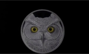 15$ The Great Horned Owl, Glow in the Dark