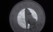 20$ Howling Wolf- Nocturnal by Nature