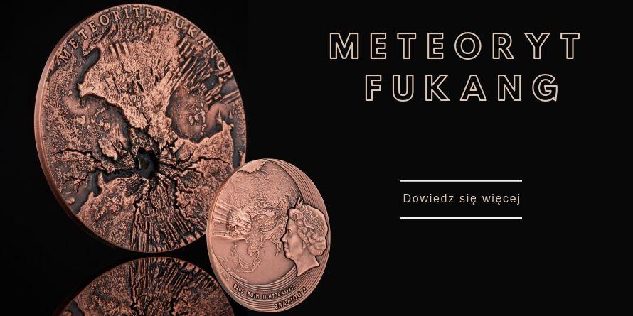 5$ Meteoryt Fukang - Świat Meteorytów